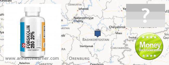 Where to Buy Forskolin Extract online Bashkortostan Republic, Russia