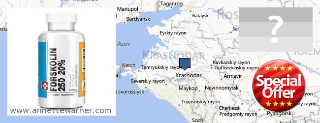 Where to Buy Forskolin Extract online Krasnodarskiy kray, Russia