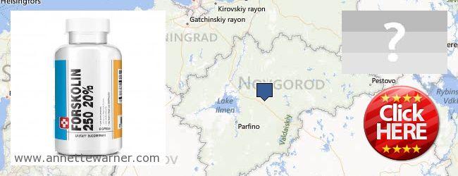 Where to Purchase Forskolin Extract online Novgorodskaya oblast, Russia