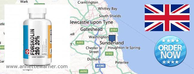 Best Place to Buy Forskolin Extract online Sunderland, United Kingdom