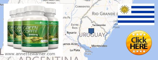Where to Purchase Green Coffee Bean Extract online Uruguay