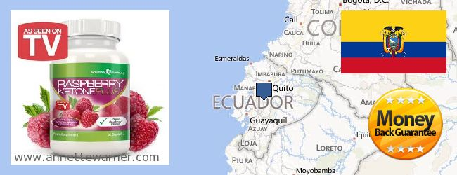 Purchase Raspberry Ketones online Ecuador