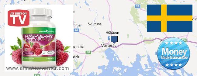 Where to Purchase Raspberry Ketones online Vasteras, Sweden