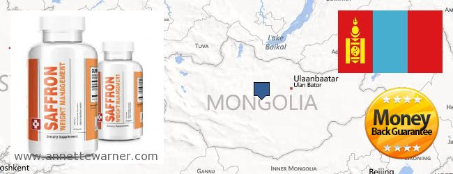 Where to Purchase Saffron Extract online Mongolia