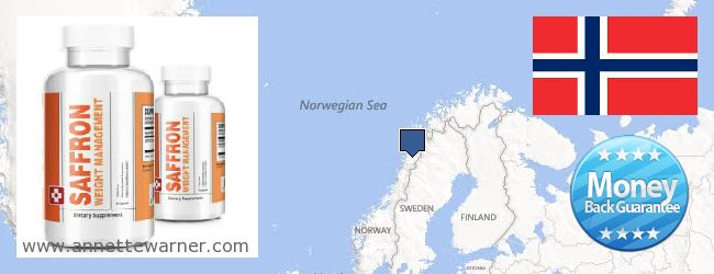 Where Can You Buy Saffron Extract online Norway