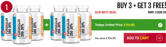 Purchase Forskolin in New Zealand