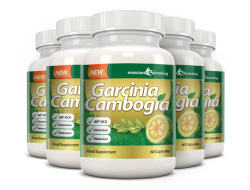 Buy Garcinia Cambogia Extract in Morocco