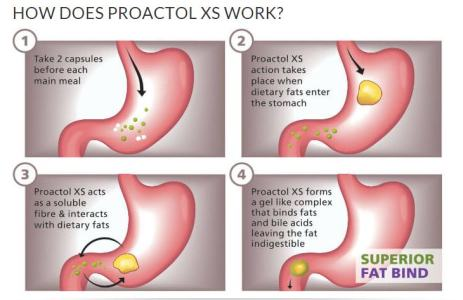 Where to Buy Proactol Plus in Barbados