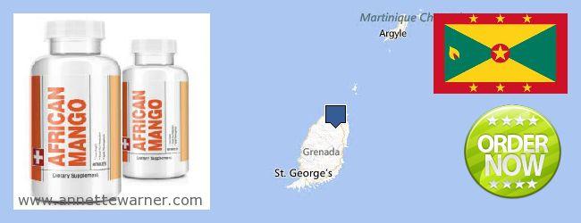Where to Buy African Mango Extract Pills online Grenada