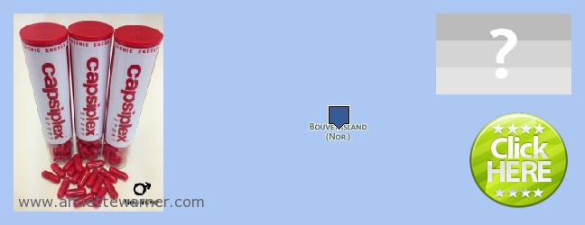 Where to Purchase Capsiplex online Bouvet Island