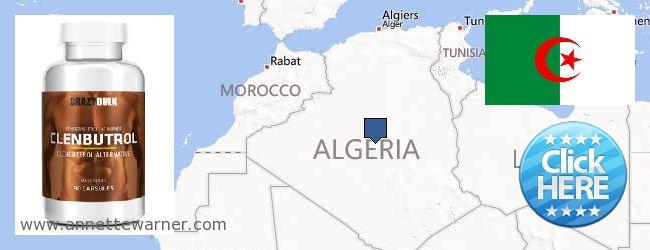 Where to Buy Clenbuterol Steroids online Algeria