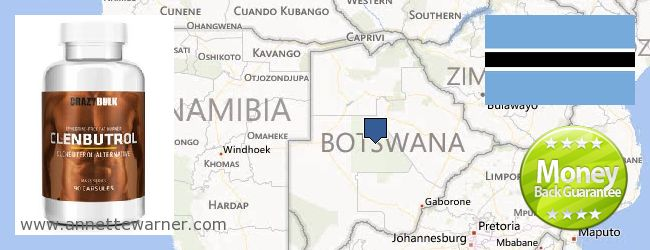 Buy Clenbuterol Steroids online Botswana