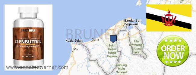 Buy Clenbuterol Steroids online Brunei