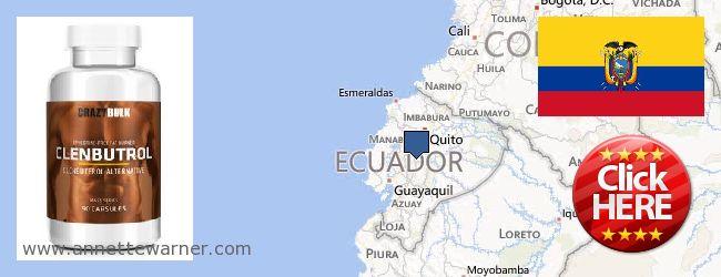 Buy Clenbuterol Steroids online Ecuador