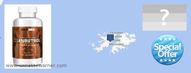 Best Place to Buy Clenbuterol Steroids online Falkland Islands
