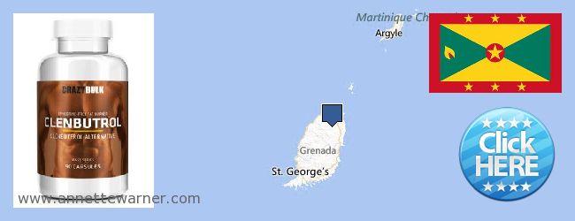 Where to Buy Clenbuterol Steroids online Grenada