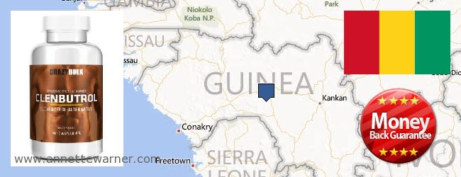 Buy Clenbuterol Steroids online Guinea