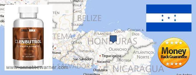 Where to Buy Clenbuterol Steroids online Honduras