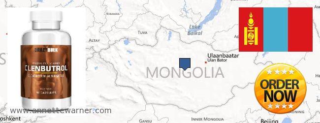 Purchase Clenbuterol Steroids online Mongolia