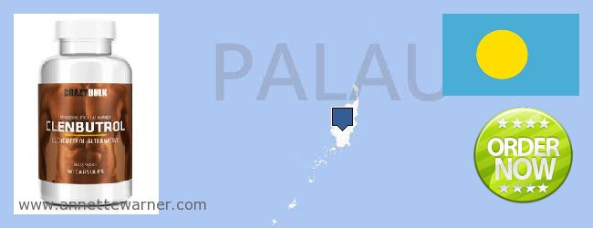 Purchase Clenbuterol Steroids online Palau