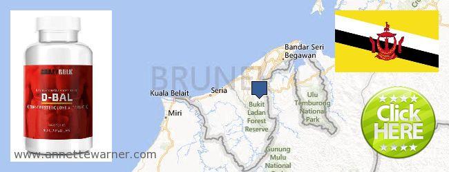 Buy Dianabol Steroids online Brunei
