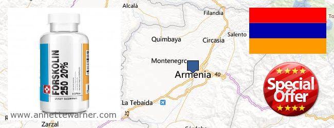 Buy Forskolin Extract online Armenia