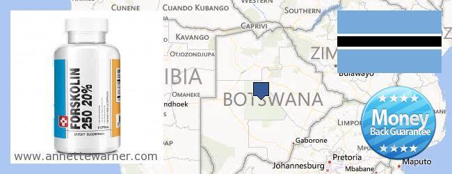 Where to Buy Forskolin Extract online Botswana