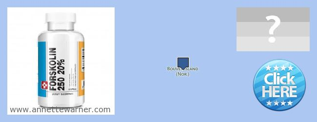 Where to Buy Forskolin Extract online Bouvet Island