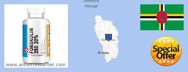 Buy Forskolin Extract online Dominica