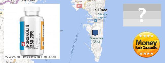 Where to Buy Forskolin Extract online Gibraltar