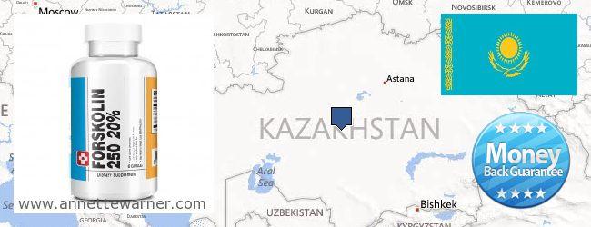 Where Can I Purchase Forskolin Extract online Kazakhstan