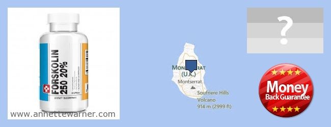 Purchase Forskolin Extract online Montserrat