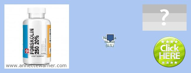 Purchase Forskolin Extract online Navassa Island