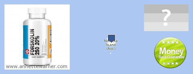 Where to Buy Forskolin Extract online Norfolk Island