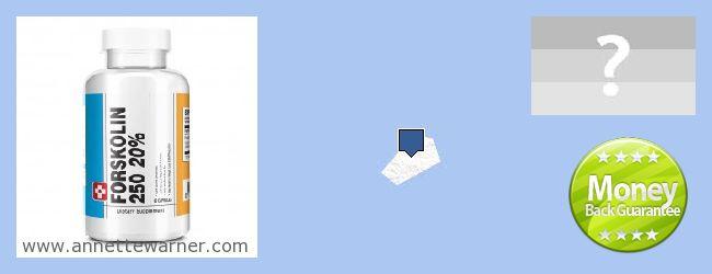 Where to Buy Forskolin Extract online Saint Helena