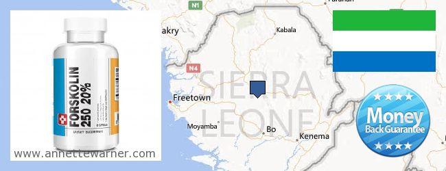 Where Can I Buy Forskolin Extract online Sierra Leone