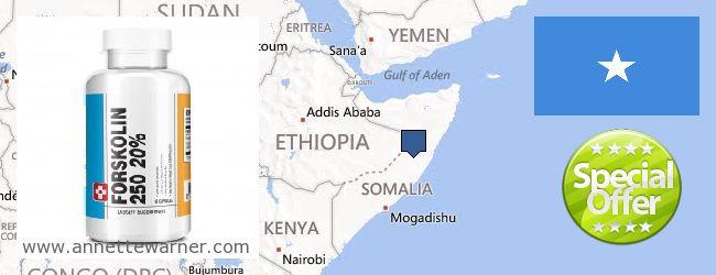 Where to Buy Forskolin Extract online Somalia