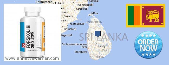 Where Can You Buy Forskolin Extract online Sri Lanka