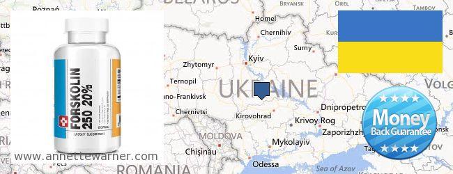 Where Can I Buy Forskolin Extract online Ukraine