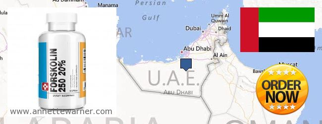 Purchase Forskolin Extract online United Arab Emirates