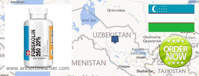 Where Can I Purchase Forskolin Extract online Uzbekistan