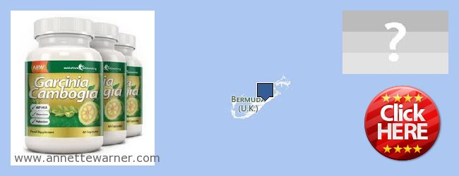 Where Can You Buy Garcinia Cambogia Extract online Bermuda