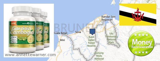 Where Can You Buy Garcinia Cambogia Extract online Brunei