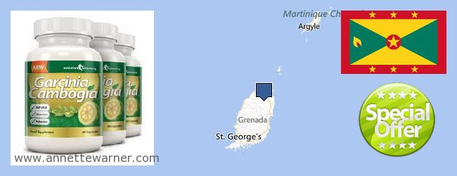 Where to Purchase Garcinia Cambogia Extract online Grenada