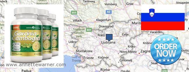 Where to Purchase Garcinia Cambogia Extract online Slovenia