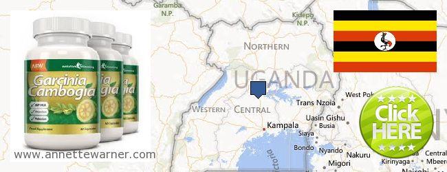 Where Can You Buy Garcinia Cambogia Extract online Uganda