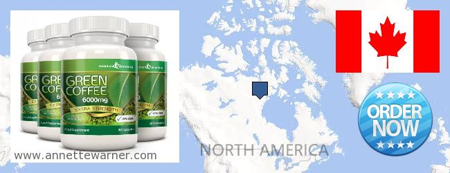 Where to Buy Green Coffee Bean Extract online Canada