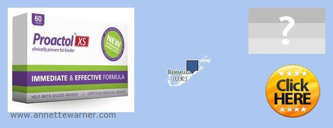 Where to Purchase Proactol XS online Bermuda