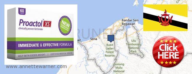 Where to Buy Proactol XS online Brunei