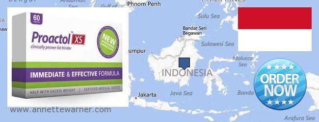 Purchase Proactol XS online Indonesia